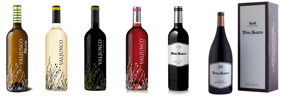 Visita a Grupo VILE Bodegas-Vinos DO Leon