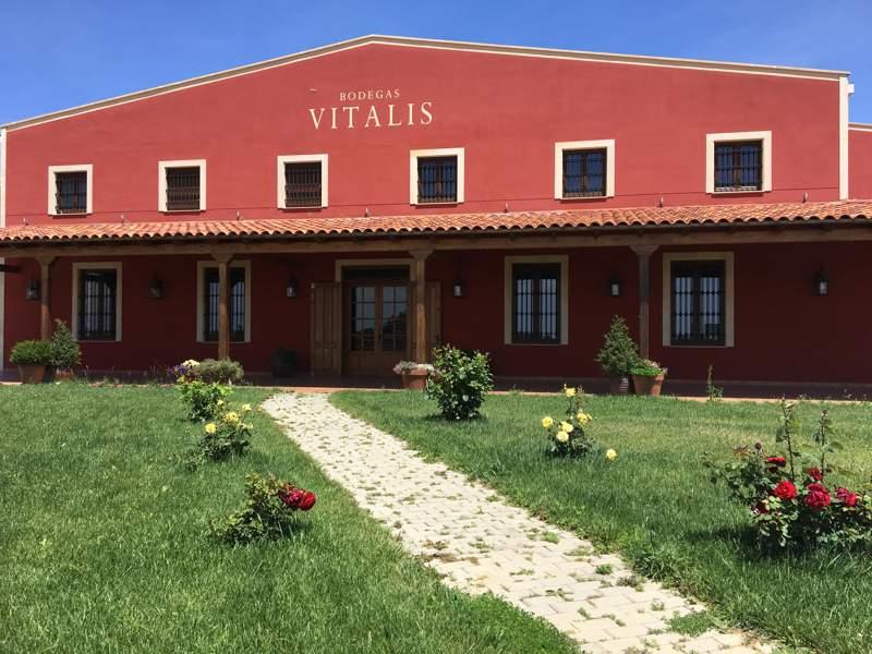 Bodegas Vitalis - Exterior