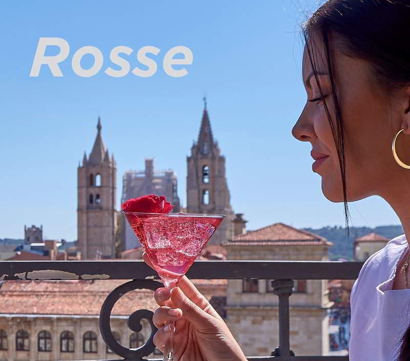 Rosse - Coctelería Guía Gastronómica de León & Pablo del Blanco